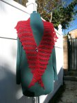 Red Reain Wrap
