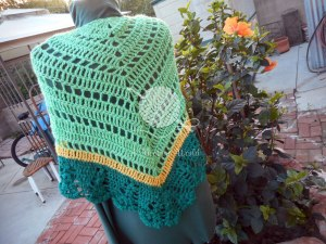Middle of the Road Shawl