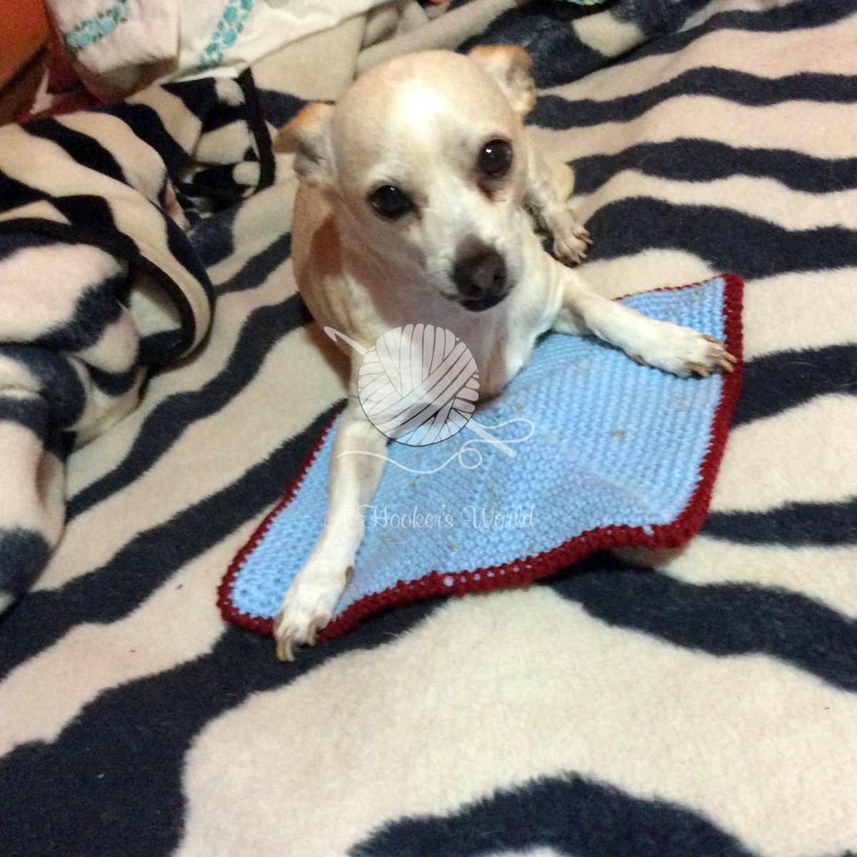 Mojee-Approved Cat Pad