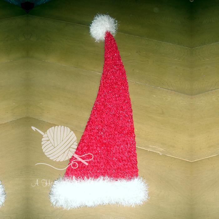 Extra Special Santa Hat